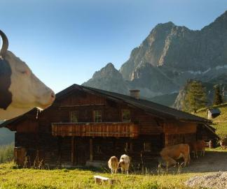 (© Schladming - Ramsau - Dachstein Tourist office)